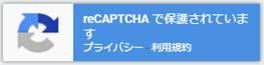 recaptcha_logo2